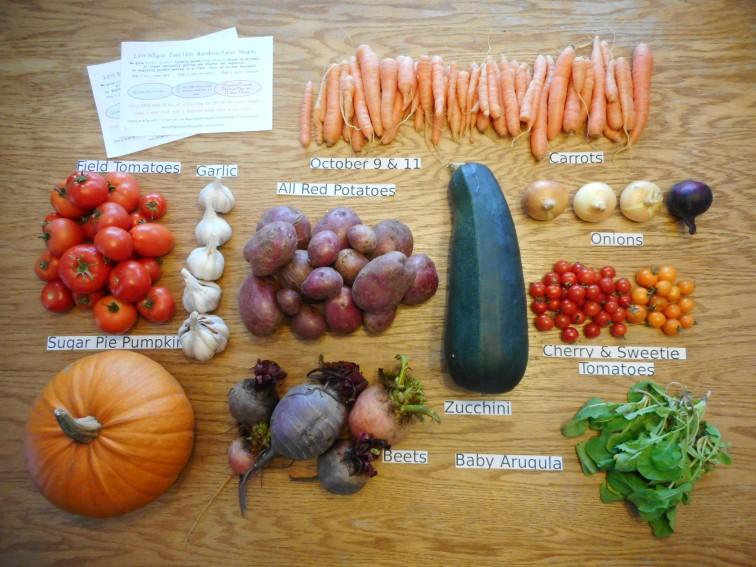 16. veggie share