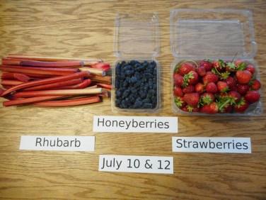 3. CSA Fruit July 10 & 12