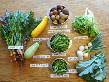 6. CSA veggies Week six